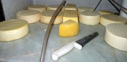 mini_queijo